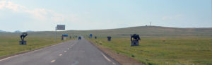 mongolian-dirt-road